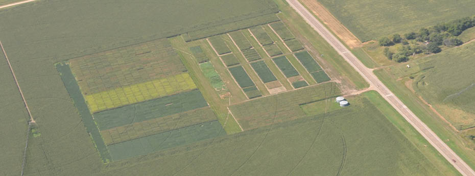 By partnering with producers in RD Plots, we had many key learnings; learning from each other for the benefit of all.  During harvest we were able to work with many of our owners to take advantage of grain markets to reduce drying costs and pass along higher cash prices.  (Above: Aerial view of the UFC Answer Plot 2013)
