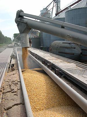 corn_train for blog