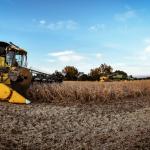 Harvest-1024x598