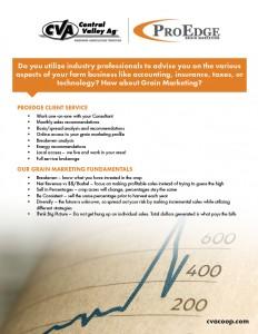 ProEdge Client Service Flyer