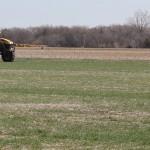wheat spraying ss