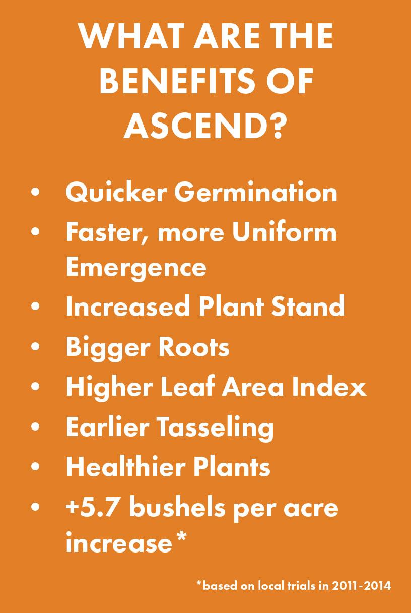 Ascend1