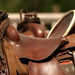 saddle gear